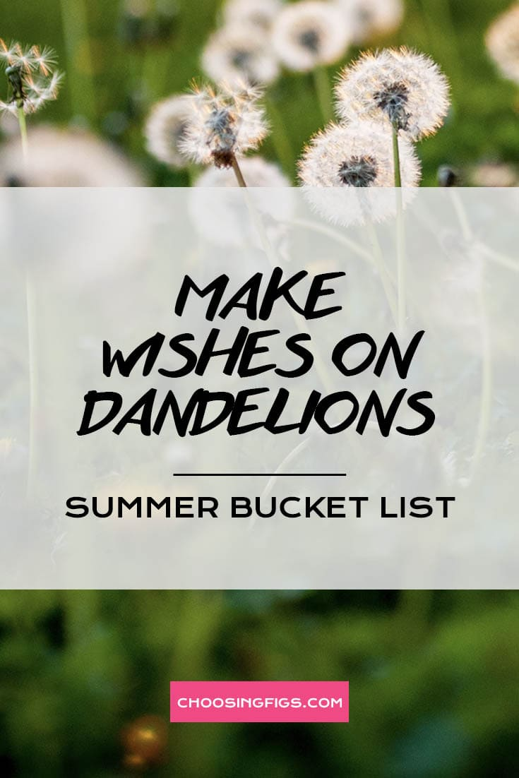 MAKE WISHES ON DANDELIONS | Summer Bucket List Ideas: 50 Things to do in Summer