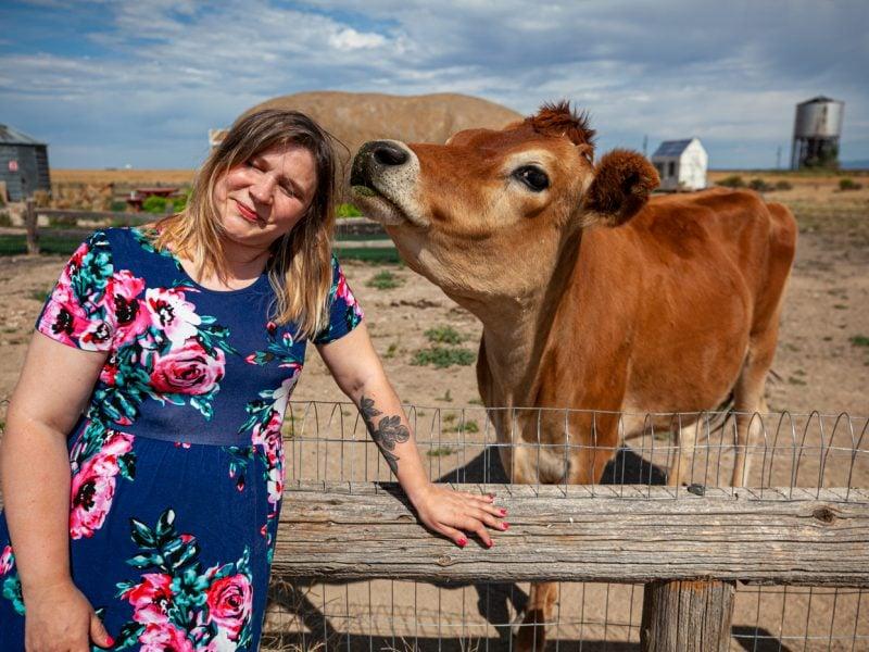 Feeding Dolly the Cow at the Big Idaho Potato Hotel - Potato AirBNB in Boise, Idaho
