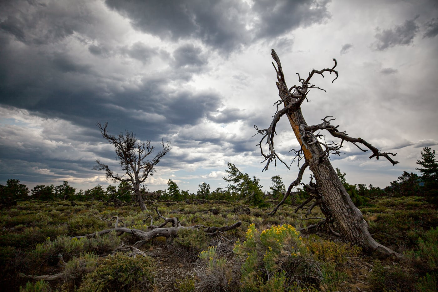 Craters of the Moon National Monument & Preserve in Idaho   Idaho Road Trip Stops