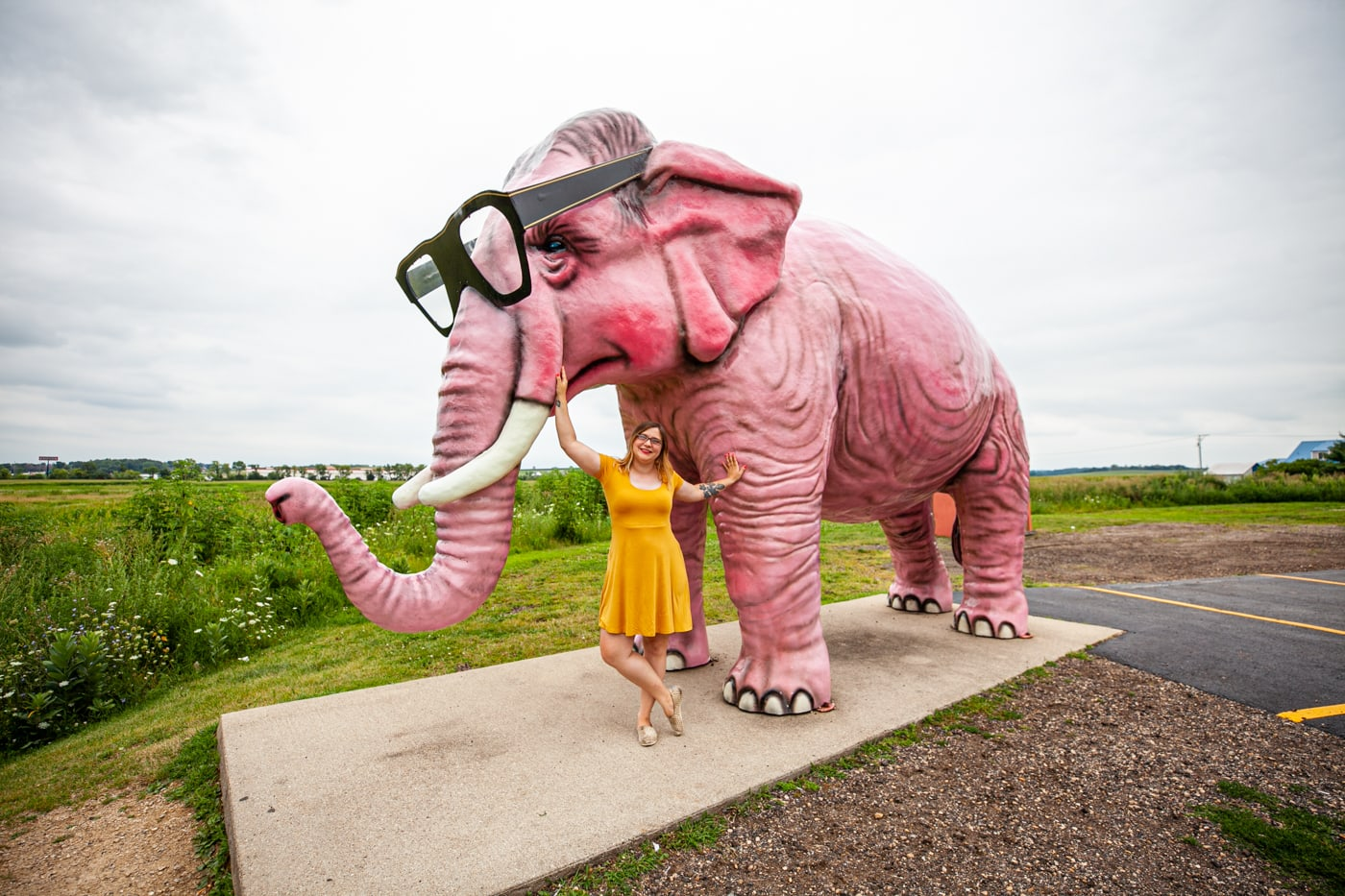 Pinky the pink elephant in DeForest, Wisconsin