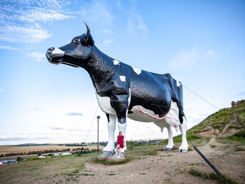 Salem Sue, the world's largest Holstein cow in New Salem, North Dakota