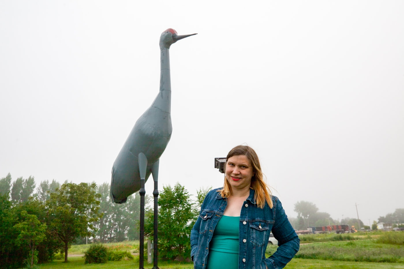 Sandy - The World's Largest Sandhill Crane in Steele, North Dakota