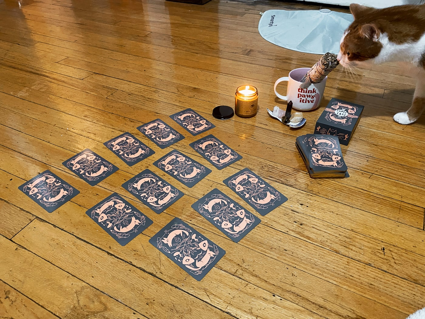 New Years Eve tarot card reading.